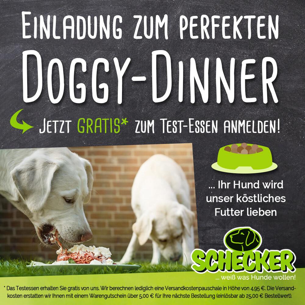 Doggy-dinner Rabatte, Aktionen & Rabattcodes